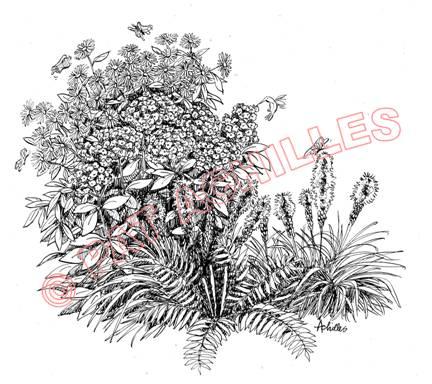 churchvilleflowers