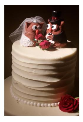weddingowlsoncake