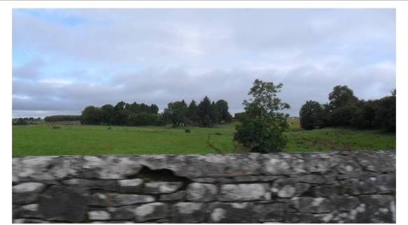 ireland_roscommon8
